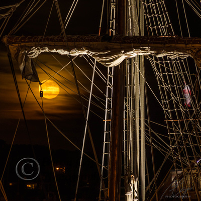 _DSC2339el galleon20130526